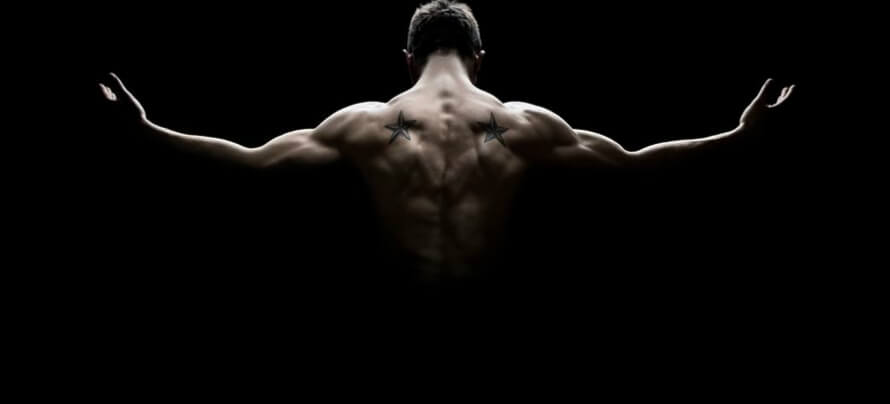 back muscles